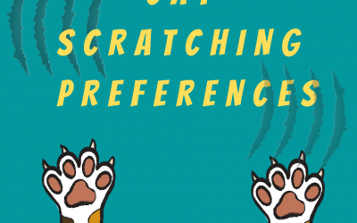 Cat Scratching Preferences