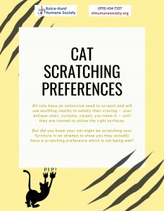 Cat Scratching Preferences_Page_1