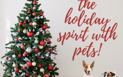Getting in the Holiday Spirit with Pets