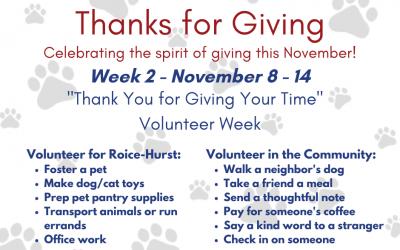 Thanks for Giving: Volunteer Week