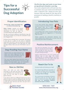 Tips for a Successful Dog Adoption_Page_1