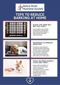 Reducing Barking