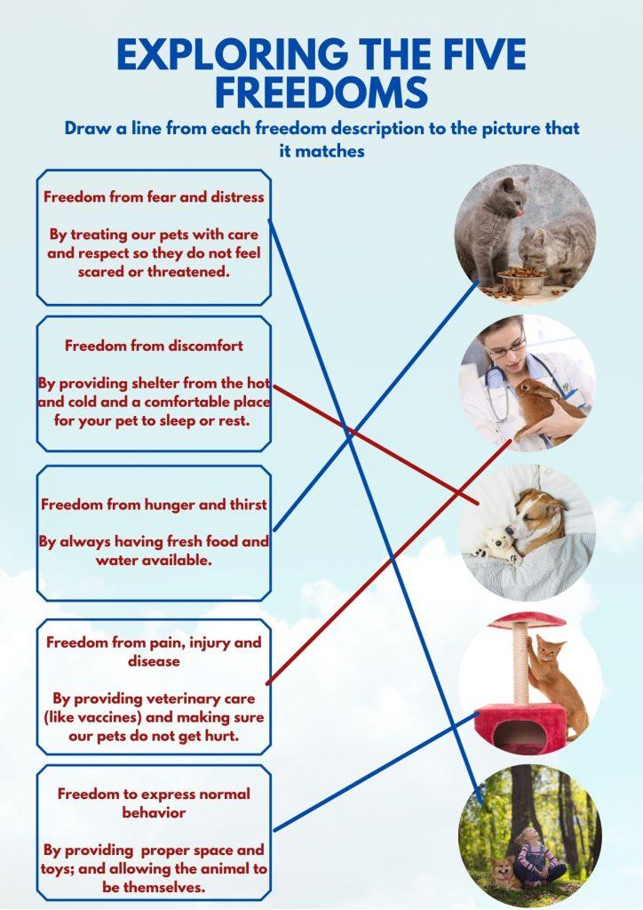 Five Freedoms Answer Key