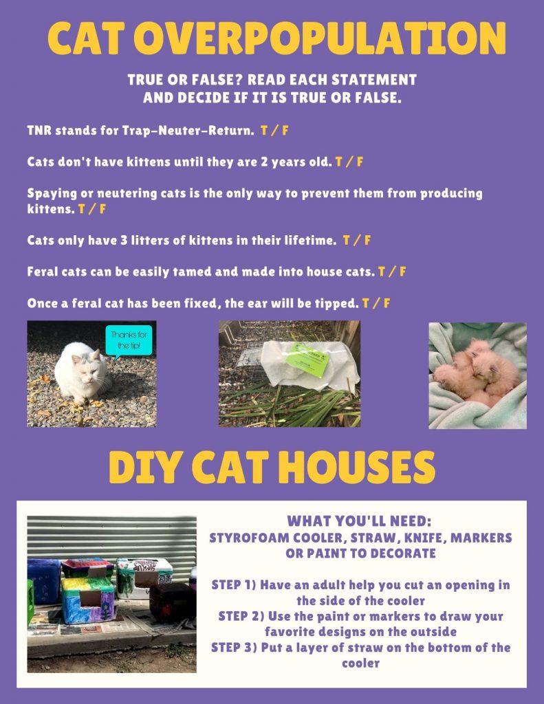DIY Colony Cat Houses