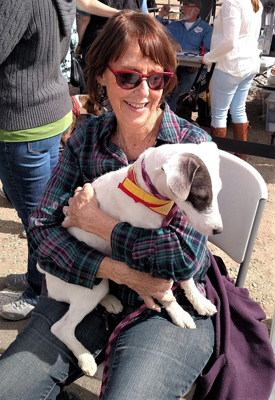 Volunteer - Pet Taxi Service, Bingo, Transport animals to other shelters/rescues - Roice-Hurst Humane Society Servicing Grand Junction, Mesa County and Western Colorado