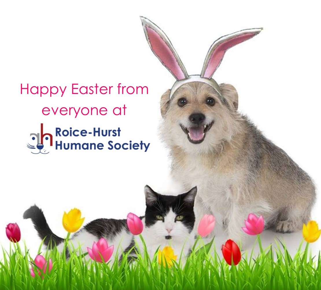 Happy Easter from Roice-Hurst