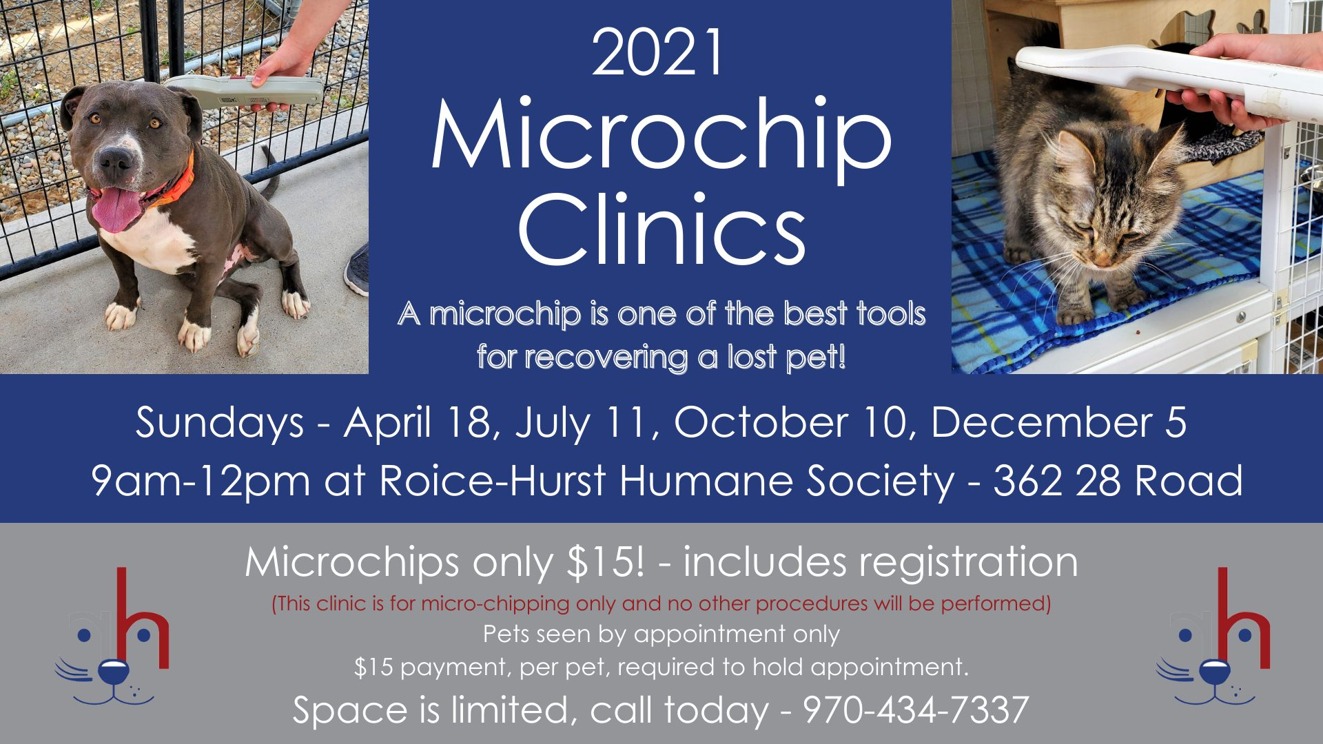 Roice-Hurst Microchip only clinic