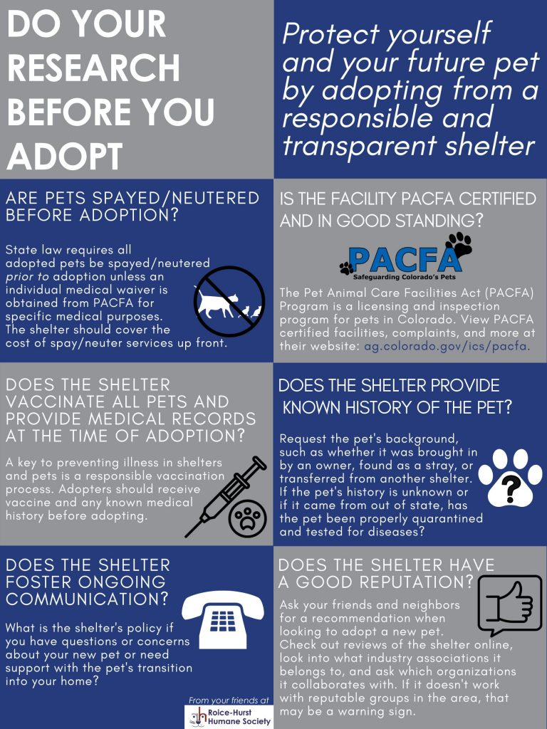 Do your research before you adopt.