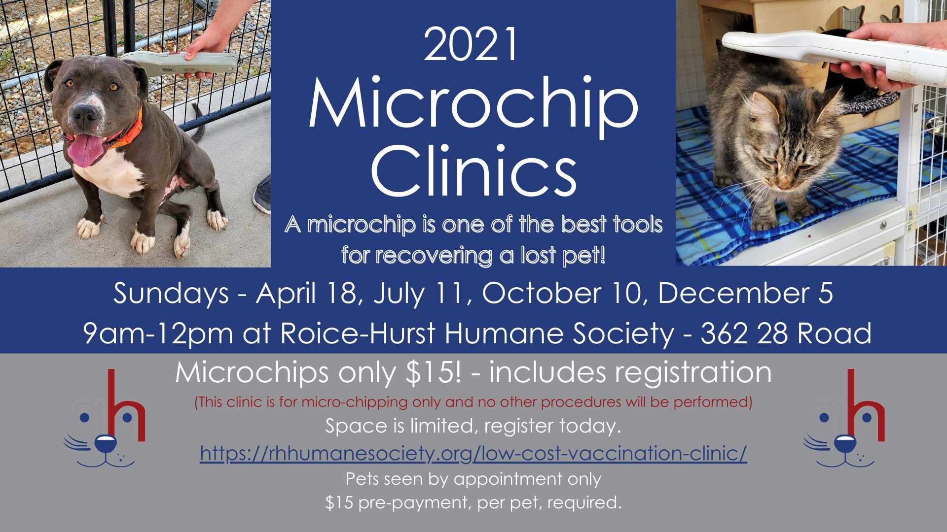 Microchip Only Clinic