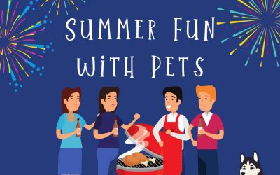 Summer Fun with Pets